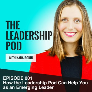 How the leadership pod can help you as an emerging leader